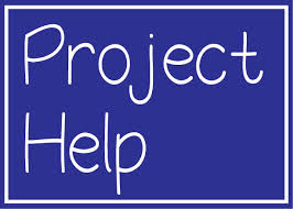 project help 2